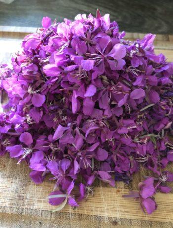 En haug med lilla geitrams blomster på skjærefjøl