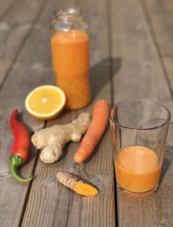 Glass og flaske med appelsinjuice appelsin chili gurkemeie ingefær gulrot utendørs