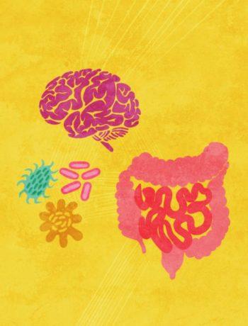 Illustrasjon tarm hjerne bakterier gul bakgrunn