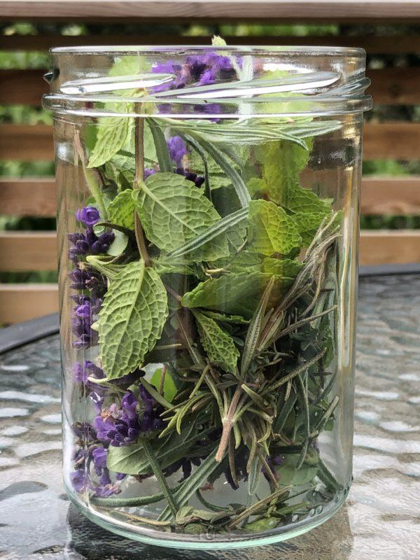 Friske urter i glass